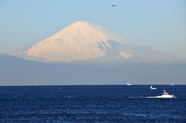 施設内から眺めた富士山の様子