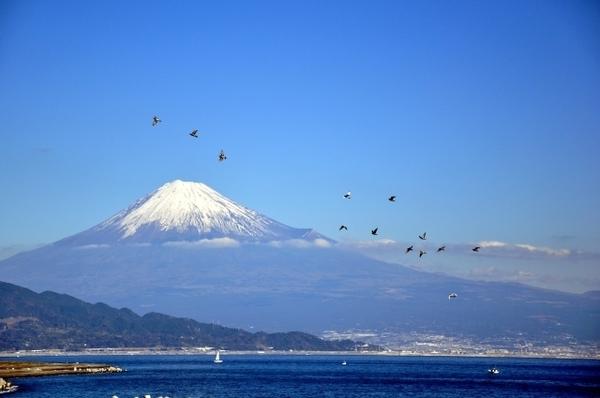 個室から、共用スペースから、お風呂から。富士山が見える介護施設まとめ